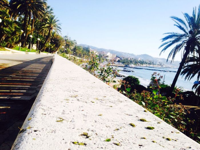 San Remo Happyness Day Relaxing Enjoying Life Beautiful Nature Amazing View Cityscapes Light And Shadow