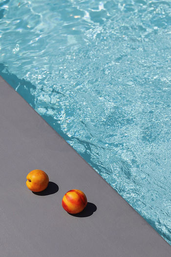 High angle view of fruits in swimming pool