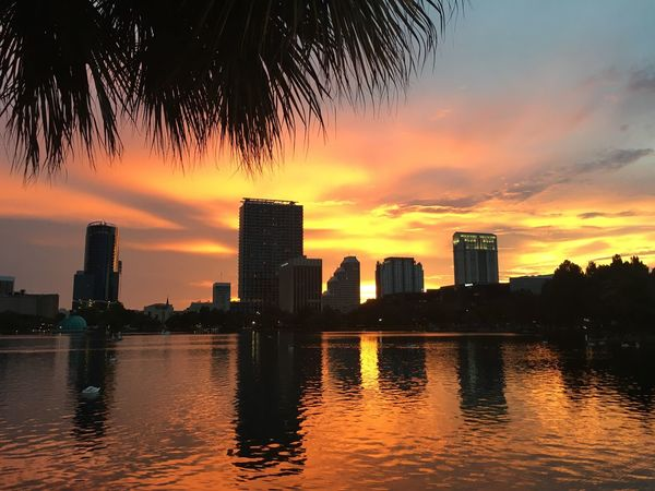 Beautiful sunset at Lake Eola in Downtown Orlando. Sunset Sunset_collection Sunset Silhouettes Beauty In Nature Lake Eola Park
