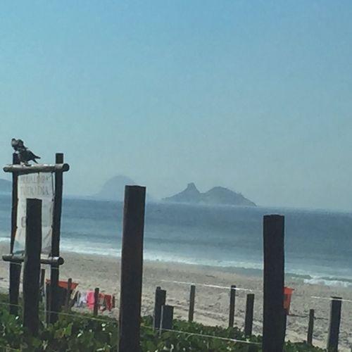 Beach Rio De Janeiro Nature