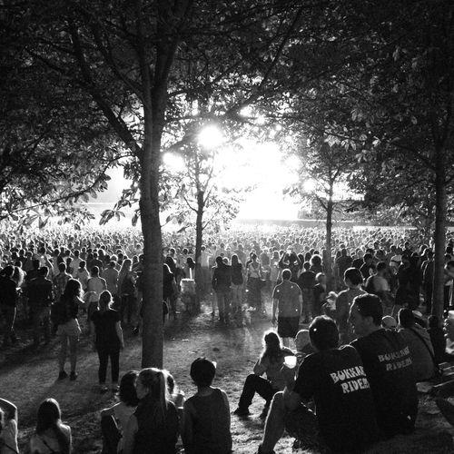 For The Love Of Music Live Music Rock'n'Roll Festival Rockenseine