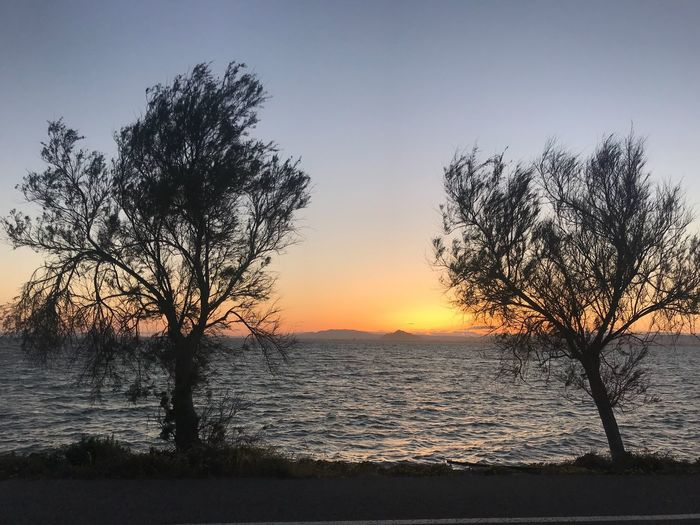 Tarais v2 Sky Water Sunset Scenics - Nature Beauty In Nature Tree Plant Tranquility Tranquil Scene Silhouette Nature Sea Idyllic Beach Orange Color