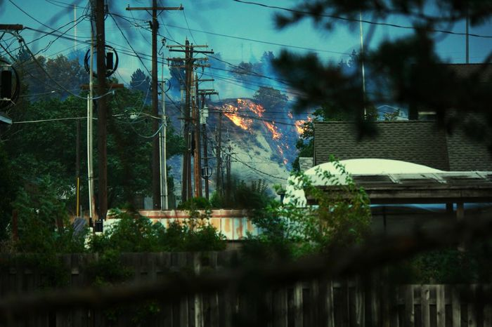 The Photojournalist - 2016 EyeEm AwardsFire Wildfire Disaster Weather Burning Flames Natural Disaster Paint The Town Yellow