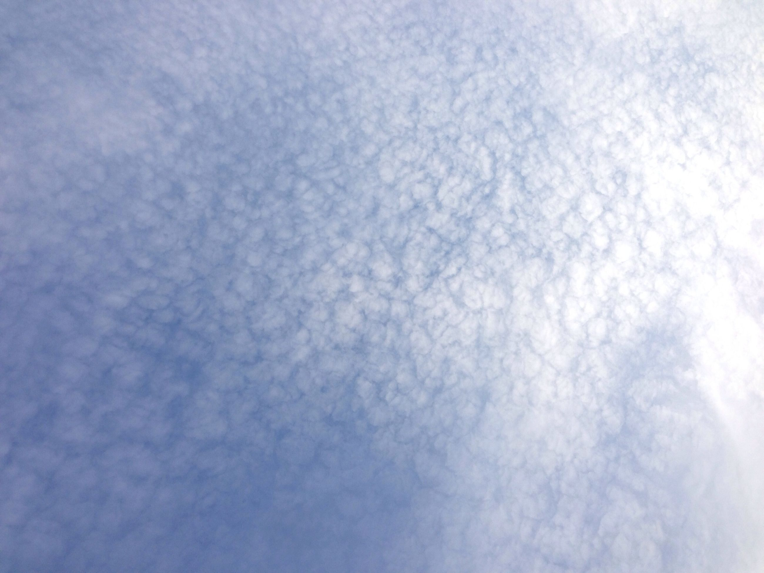 full frame, backgrounds, low angle view, white color, nature, weather, tranquility, sky, beauty in nature, white, textured, day, no people, outdoors, pattern, blue, cloud - sky, copy space, covering, tranquil scene