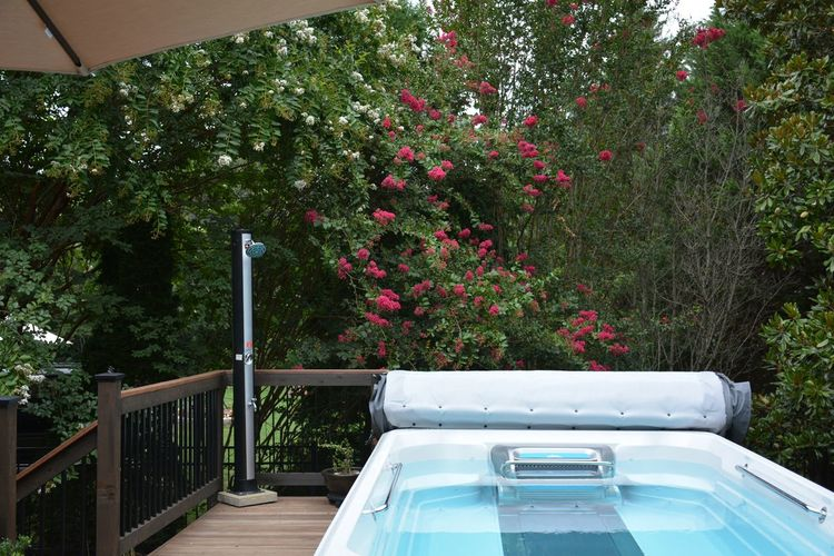 View of flowering plants by spa swimming pool with treadmill