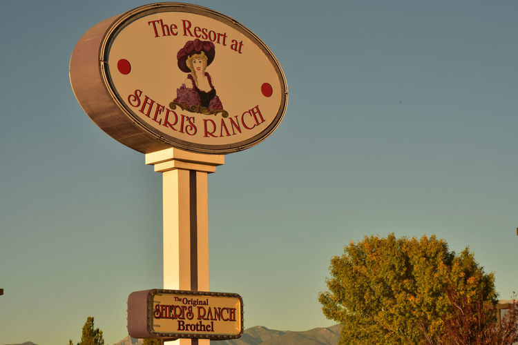 Sign for Sheri's Ranch brothel in Nevada Brothel House Clear Sky Communication Day Guidance Low Angle View Nevada No People Outdoors Prostitution Road Sign Sky Text Western Script