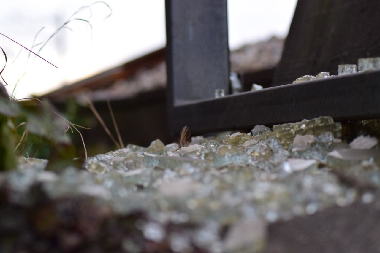 selective focus, no people, destruction, close-up, day, outdoors, nature