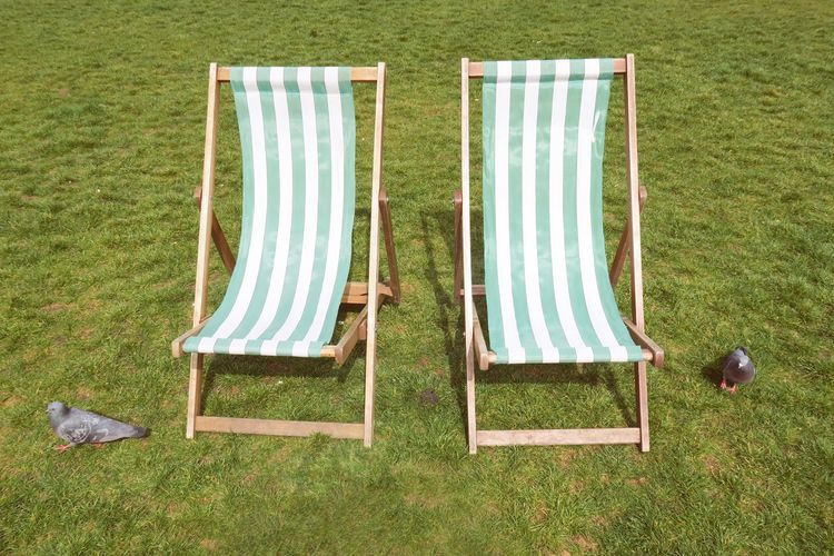 High Angle View Of Pigeons By Empty Deck Chair On Grass