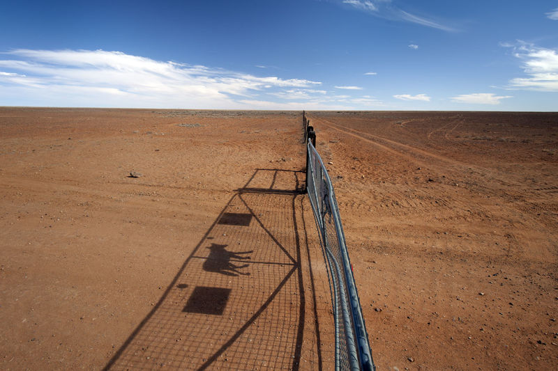 Arid Climate Australian Outback Beauty In Nature Cloud Cloud - Sky Day Desert Dingo Fence Fence Horizon Over Land Landscape Landscapes With WhiteWall Nature Outdoors Remote Sand Scenics Sky Sunlight Tranquil Scene Tranquility Transportation Vastness Kuomi Collection