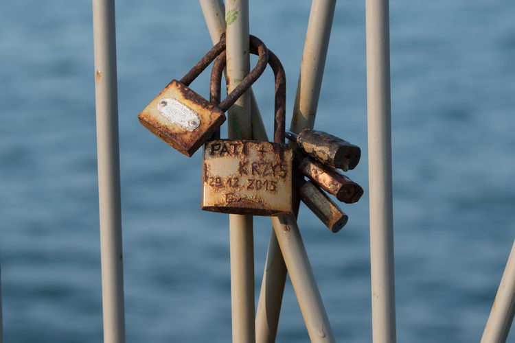 Love lockers at the seaside, on the fence Valentine's Day  Fence Metal Sea Seaside Love Symbol Tradition Lockers