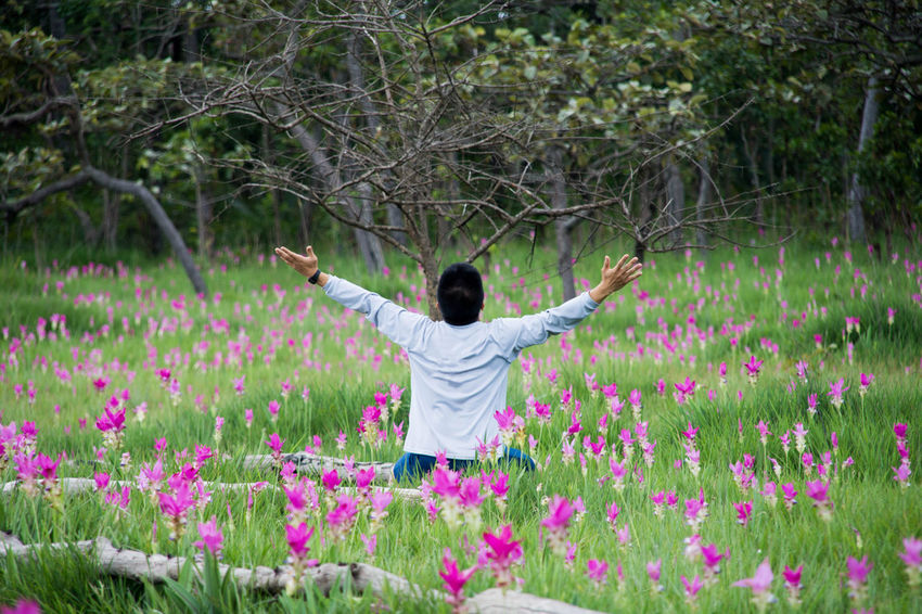 Adult Adults Only Arms Outstretched Arms Raised Beauty In Nature Day Flower Freshness Growth Human Arm Human Body Part Limb Nature One Person One Woman Only Only Women Outdoors People Rear View Siam Tulip Standing Young Adult