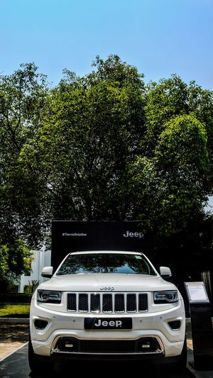 Jeep Grand Cherokee Jeep Jeep Cherokee JEEP Grand Cherokee Jeep Life ❤ Cars Car Kolkata Tridenthotel Bhubaneswar India Nikon Nikonphotography Nikonphotographer Nikon D3300 Automobile Automotive Photography Automotive Trees Tree Sky