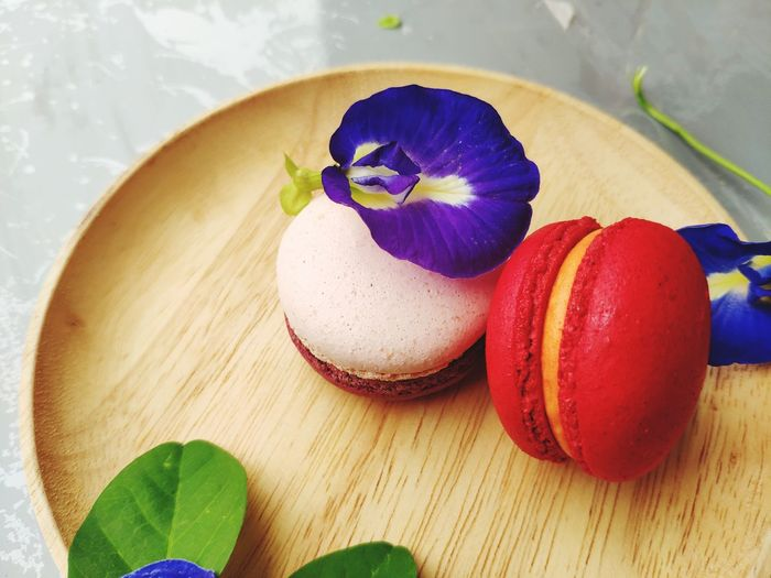 Macarons Flower Leaf Table Still Life Close-up Sweet Food Food And Drink Easter Egg Plum Macaroon Egg Carton Apricot Animal Egg Dried Fruit Plum Blossom Peach Dessert