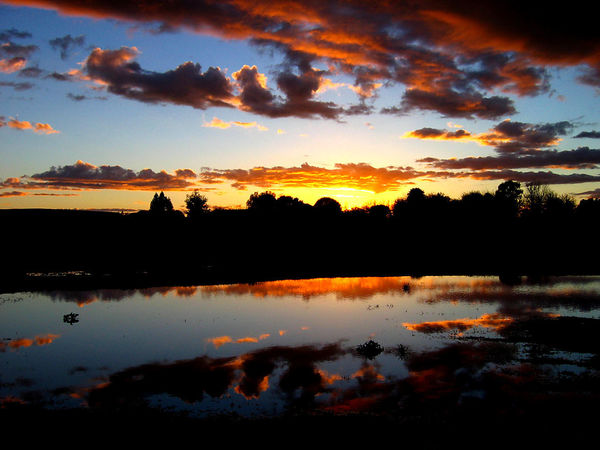 Beauty In Nature Cloud - Sky Idyllic Lake Nature No People Non-urban Scene Orange Color Outdoors Plant Reflection Romantic Sky Scenics - Nature Silhouette Sky Sunset Tranquil Scene Tranquility Tree Water