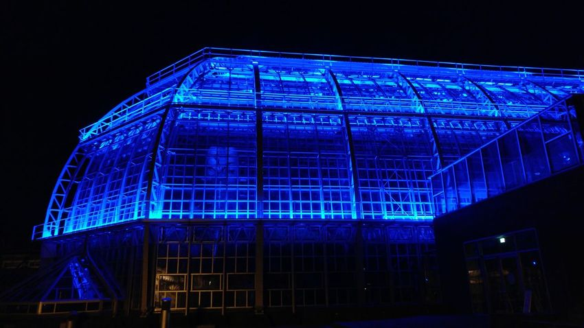 Illuminated Blue Night Architecture Outdoors Architecture Greenhouse Dark Building Exterior Built Structure Berlin Discover Berlin