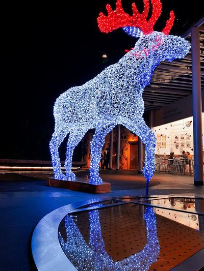 Look, expecto petronum! Water Pixelated Blue Illuminated Christmas Decoration Street Art Graffiti Fairy Lights Christmas Lights Christmas Ornament Christmas christmas tree Sculpture