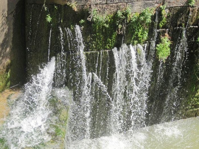 Nature Wins , Water Water Strong El Camino De Santiago CaminodeSantiago