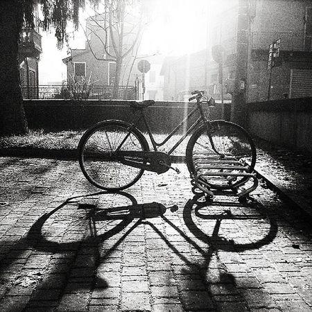 Ig_asti_ Lightfromthebike Ig_biancoenero Asti Silouette Bikes Oldbike _world_in_bw Dsb_noir Eranoir Bnwitalian  Excellent_bnw Ig_worldbnw Vivobnw Igclub_bnw Loves_noir Igs_bnw Ig_contrast_bnw Master_in_bnw Top_bnw Tv_pointofview_bnw