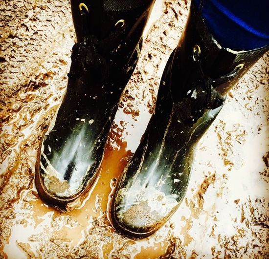 Muddy Muddy Puddles Dirty Wellington  Wellies  Joules Walking Walking Around Exploring England Natural Beauty Britishweather Sherwood Forest Winter Beautiful Naturalworld WoodLand Forest Experiencing Life