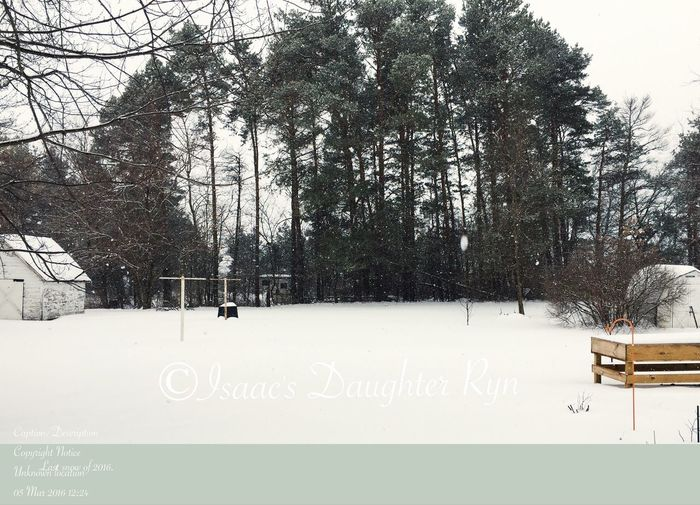 """""""Last Snow"""" of 2016. Where was this in December? IPhoneography Winter Hastings Snow ❄ World Of White At Grandmas"""