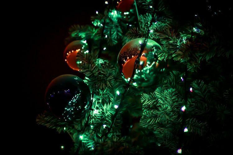 christmas tree Cristmas Decoration Close-up Garland Decor Green New Year