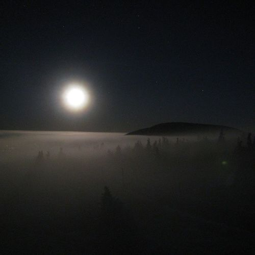 Tuesday Night Kosajakzmrd Moon trees whitehell nofilters