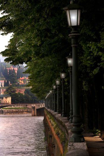 A lantern lit walkway along the banks of the river Adige in Verona, Italy Travel Travel Photography Architectural Column Architecture Building Building Exterior Built Structure City Day Direction Footpath Illuminated In A Row Lighting Equipment Nature No People Outdoors Plant Riverbank Street Street Light The Way Forward Travel Destination Tree Walkway