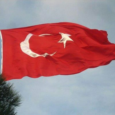 Turkish Flag Camlica