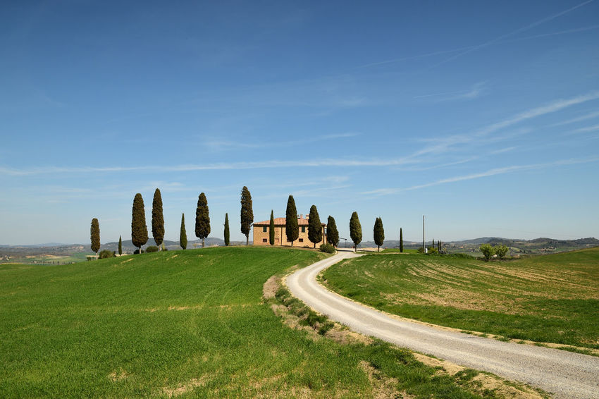 Farmhouse (Villa i Cipressini) in Tuscany on a hill with cypress trees green fields and white road in Pienza, Valdorcia (Orcia Valley), Italy. Crete Senesi Cypress Green Color Pienza Pienza Italy Siena, Italy Toscana Tuscany Cypress Trees  Day Grass Italy❤️ Landscape Nature No People Sky Spring Toscana ıtaly Travel Destinations