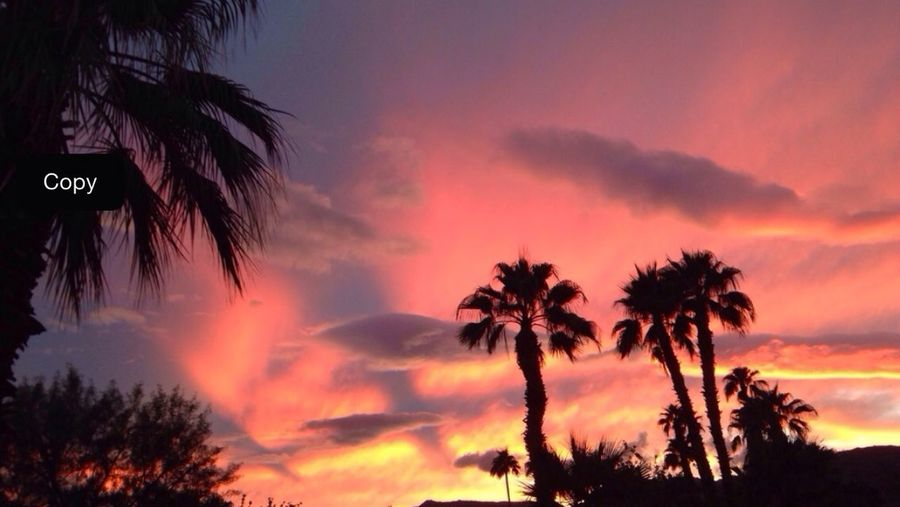 Incredible sunset tonight!!! This photo is unedited, taken on iphone5 using procam7 app!!!
