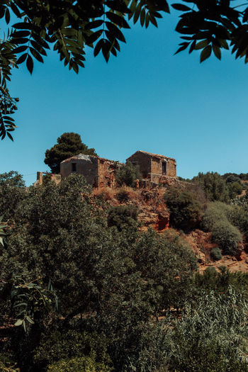 Agrigento Ancient Architecture Mediterranean  Nature Roman Building Sicily Tranquility Wanderlust Ancient Ancient Civilization Architecture Built Structure Clear Sky Day Growth History Italy Low Angle View Nature No People Old Buildings Outdoors Travel Destinations Tree