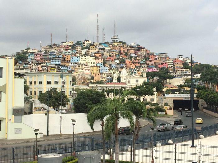 Barrio Barrio