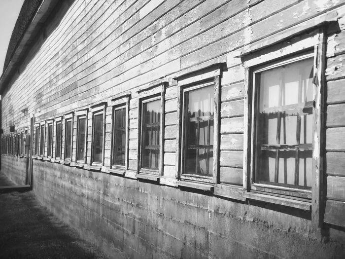Sunny side Barn