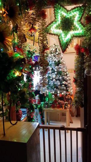 Christmas spirit 2014 in my own room! Hello World