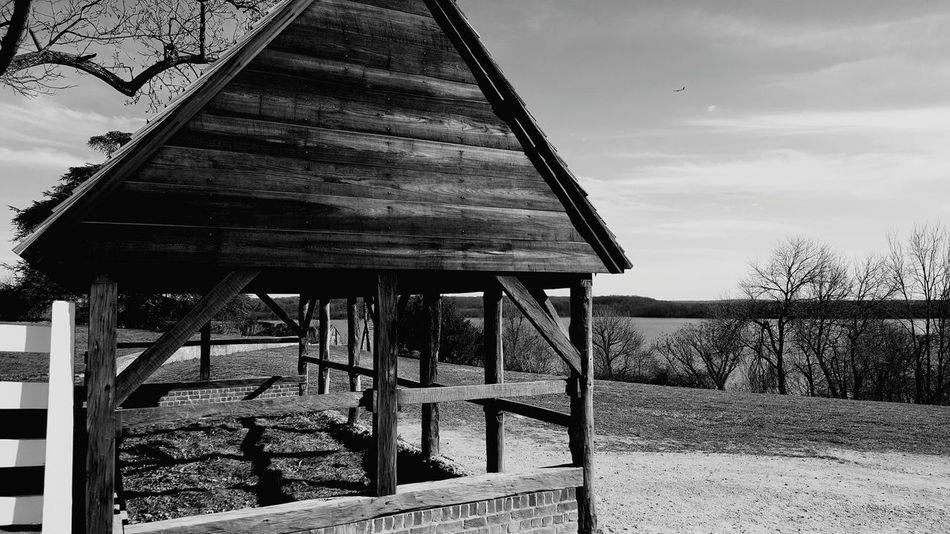 Scenery Shots Wood Structure Horse Feeding George Washington Plantation Historical