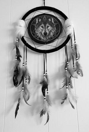 Dreamcatcher Wolf Feathers Indian Art