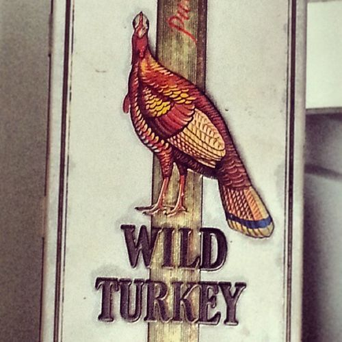 190/365 WildTurkey Gobblegobble Turkeytuesday