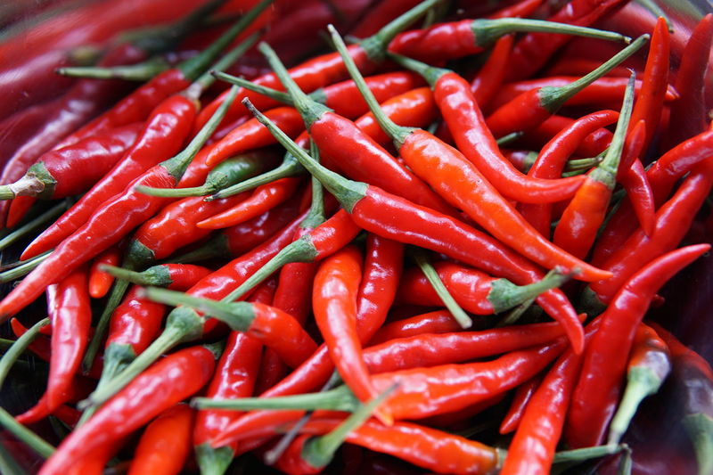 Chillis Chillis Close-up Day Food Food And Drink Freshness Healthy Eating No People Vegetables