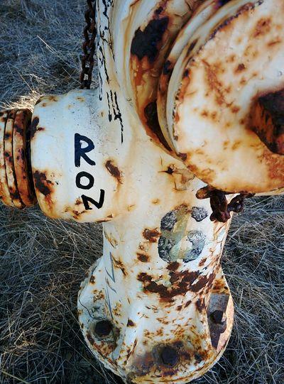 Ron Fire Hydrant Rusty