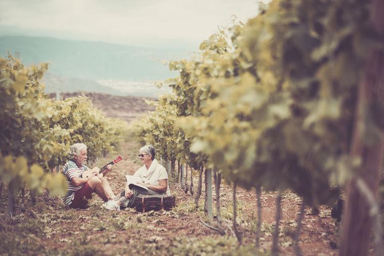 Senior Couple Sitting At Vineyard