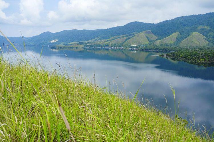 Grassland and
