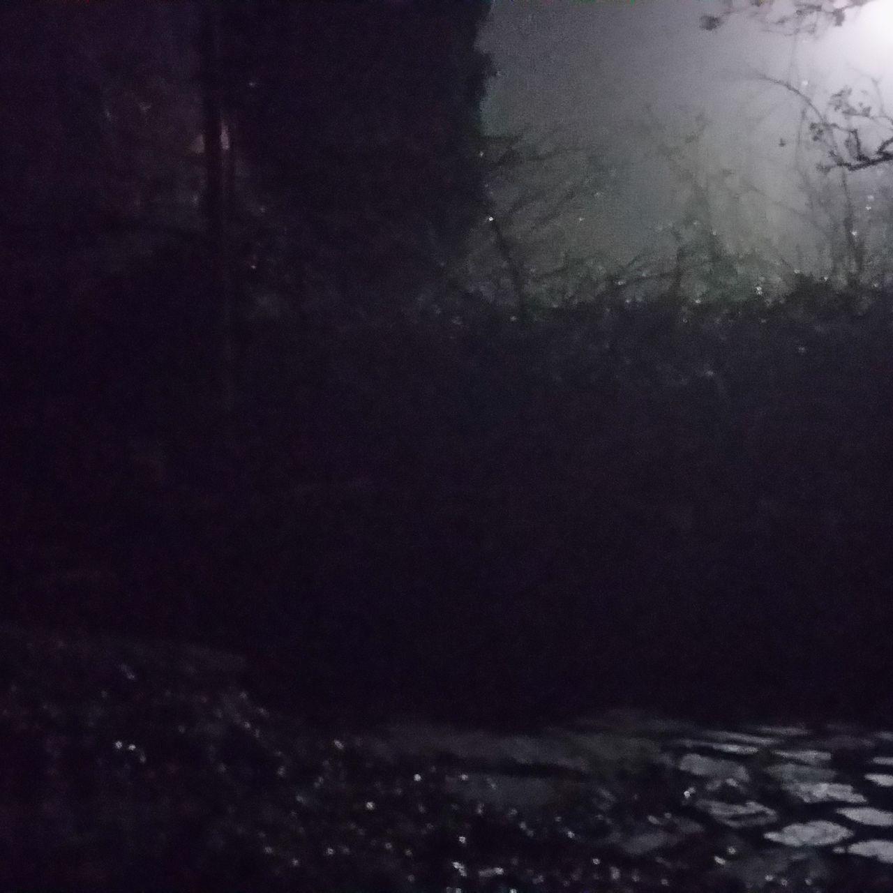 night, no people, water, indoors, close-up, nature, sky