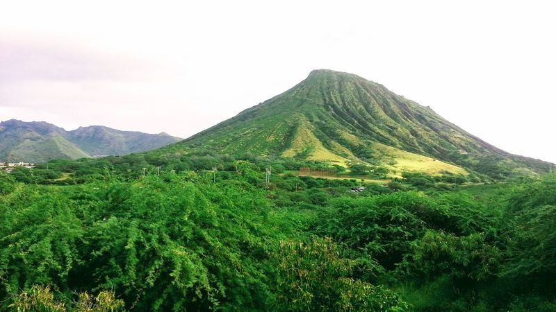 Oahu Hawaii Koko Head  Outdoors Sky Grass Green Color Tropical Scenics Lush Foliage Landscape No People Tranquility Tropics Tropical Island Day The Week On EyeEm Island Of Oahu, Hawaii Been There. Lost In The Landscape Second Acts Perspectives On Nature Oahu / Hawaii An Eye For Travel The Great Outdoors - 2018 EyeEm Awards