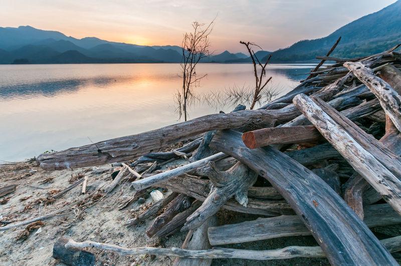 Driftwood on beach against sky during sunset