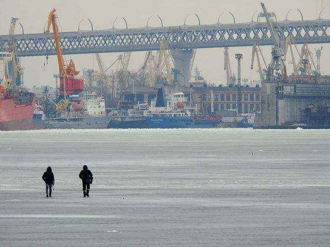 Walking By The Gulf The Gulf Of Finland Day Ice North Winter City Urban Skyline Speedway Cityscape Landscape Big City Life Snowing Cold Temperature Sea People City Architecture Cloud - Sky Baltic Colors Of Sankt-Peterburg Sankt-Petersburg Russia