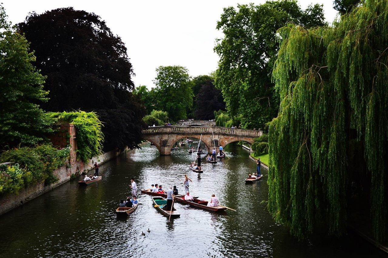 PEOPLE ON RIVER AMIDST TREES