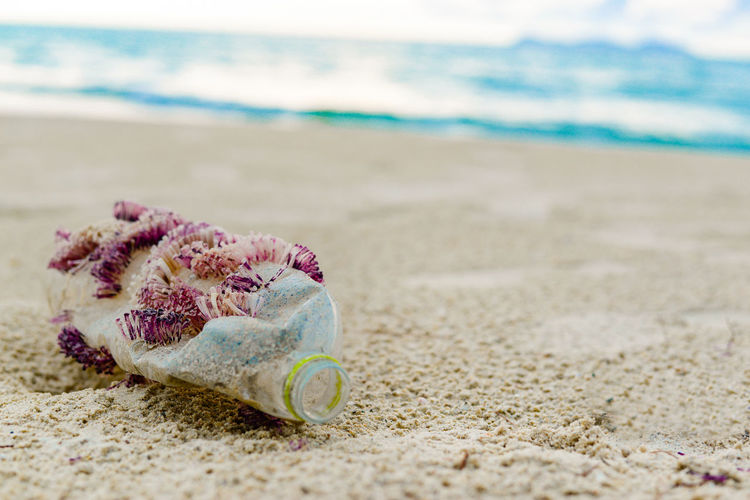 Close-up of garbage at beach