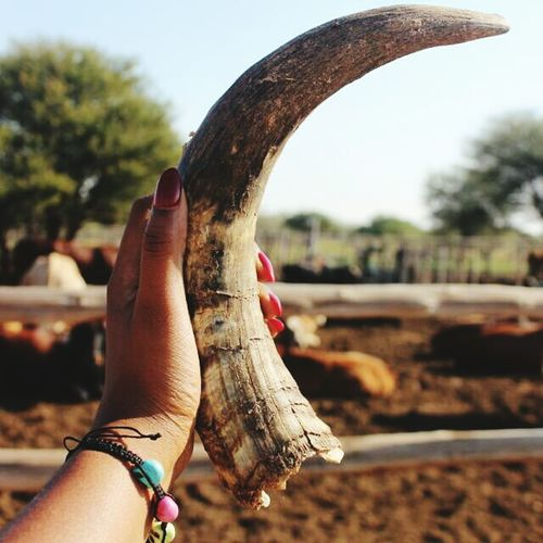 Who said girls dont go to the farm Check This Out Farm Life Horns