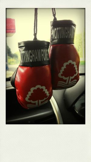 NFFC Boxing Gloves In The Car