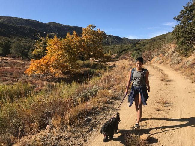 Pets Dog One Animal Domestic Animals Walking Pet Owner Pet Leash Full Length Mammal One Person Leisure Activity Nature Outdoors Real People Hiking South Asian Woman Woman Hiking Hiking With Dog Casual Clothing Bonding Lifestyles Happiness San Diego